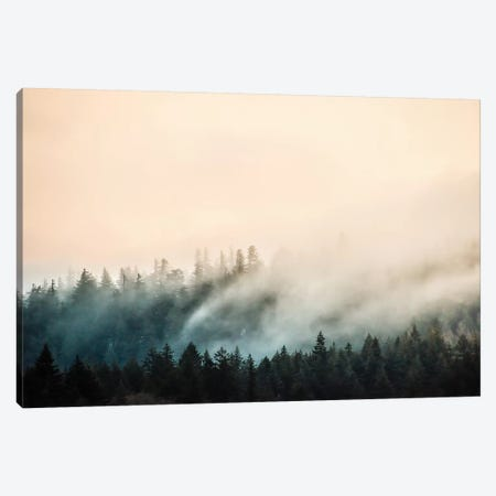 Misty Mountain Forest Clouds 3-Piece Canvas #MGK375} by Nature Magick Canvas Print