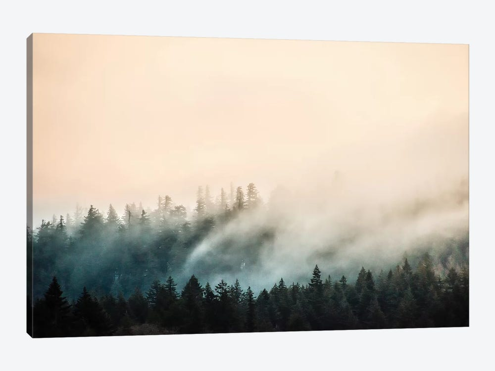 Misty Mountain Forest Clouds by Nature Magick 1-piece Canvas Wall Art