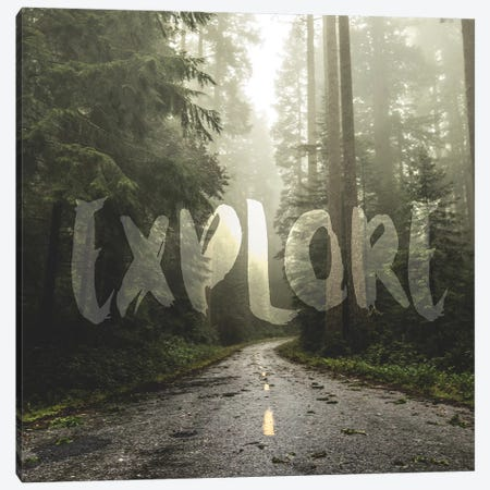 In Explore Redwood Forest Road Square Canvas Print #MGK380} by Nature Magick Art Print