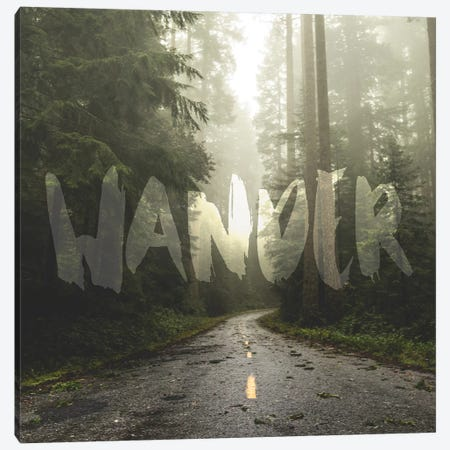 In Wander Redwood Forest Road Canvas Print #MGK385} by Nature Magick Canvas Art