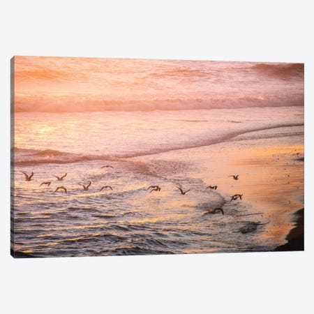 Ocean Beach and Sunset Seagulls 3-Piece Canvas #MGK399} by Nature Magick Canvas Wall Art