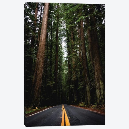 Adventure Mountain Forest Road Trip Redwoods Travel Nature At Redwood National Park California Canvas Print #MGK3} by Nature Magick Canvas Wall Art