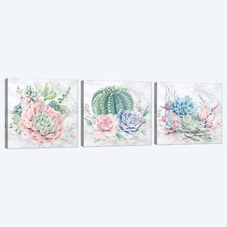 Desert Succulents Triptych Canvas Print Set #MGK3HSET001} by Nature Magick Canvas Wall Art
