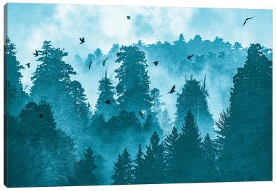 Raven Redwood Forest Blue Canvas Art Print