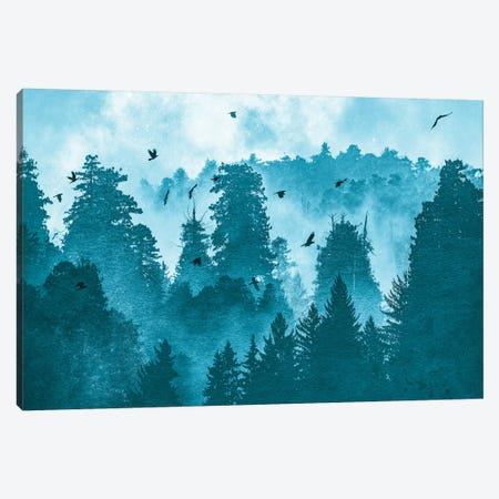 Raven Redwood Forest Blue Canvas Print #MGK413} by Nature Magick Art Print