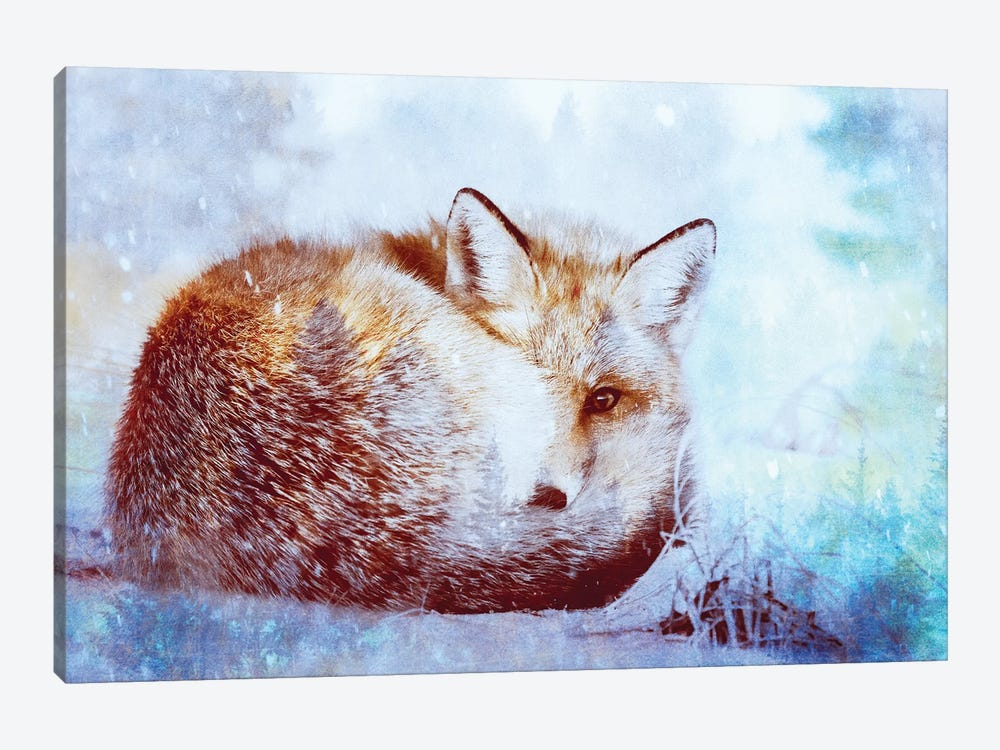 Red Fox Winter Turquoise Forest Animal Portrait by Nature Magick 1-piece Canvas Artwork
