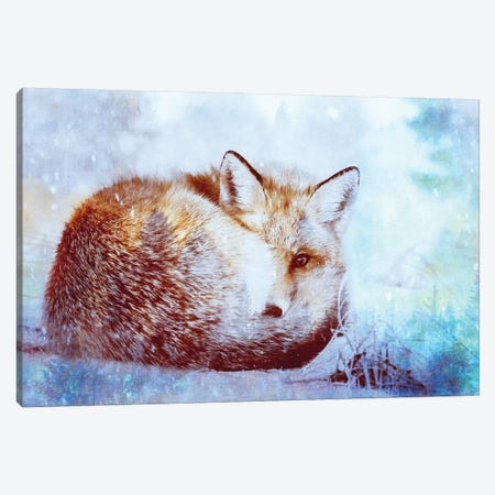 Red Fox Winter Turquoise Forest Animal Portrait Canvas Print #MGK414} by Nature Magick Canvas Artwork