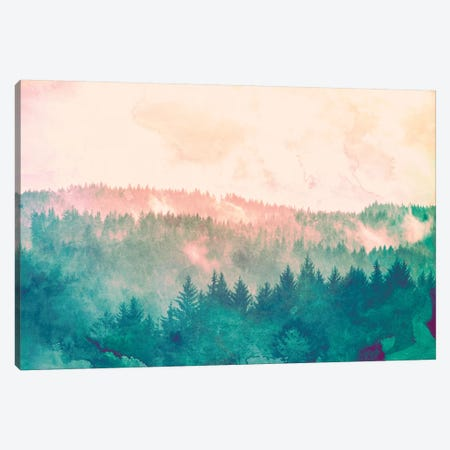 Redwood Forest Sky Black and White Canvas Print #MGK416} by Nature Magick Canvas Artwork