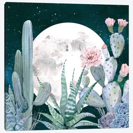 Desert Nights I Canvas Print #MGK41} by Nature Magick Canvas Wall Art