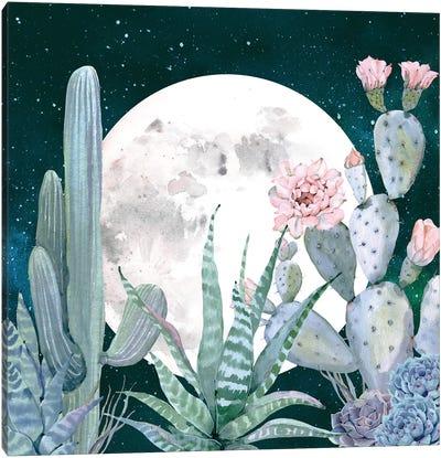 Desert Nights I Canvas Art Print