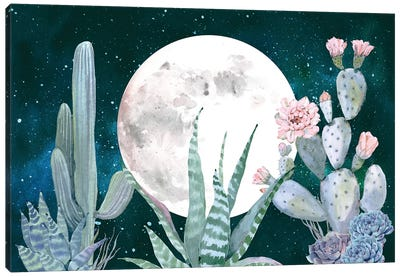 Desert Nights Cactus Succulents Moon Night Sky Southwestern In Turquoise Blue Mint Green And Pink III Canvas Art Print