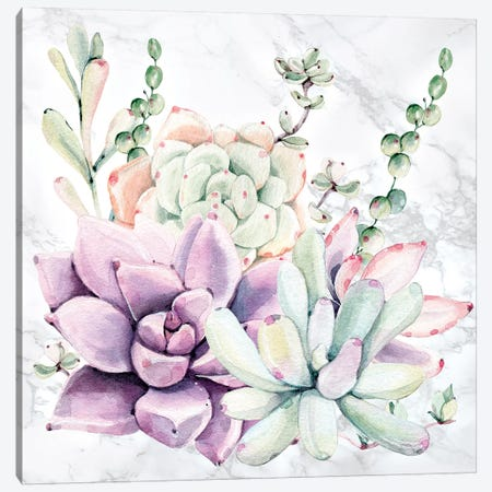 Southwest Succulents Floral Watercolor on Marble Canvas Print #MGK442} by Nature Magick Canvas Art