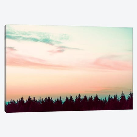 Sunset Over The Pines Canvas Print #MGK452} by Nature Magick Art Print