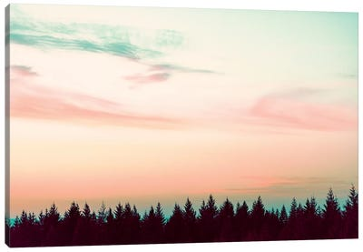 Sunset Over The Pines Canvas Art Print