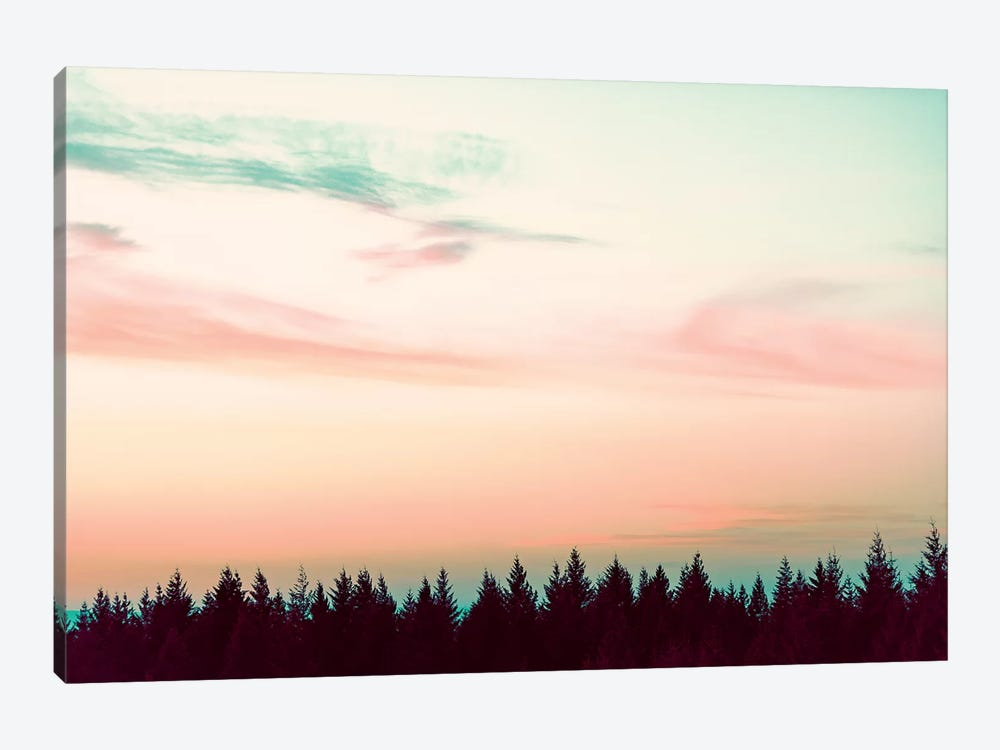 Sunset Over The Pines by Nature Magick 1-piece Canvas Wall Art