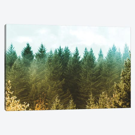 Vintage Green Treescape Canvas Print #MGK478} by Nature Magick Art Print