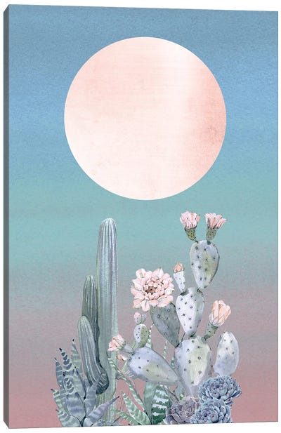 Desert Twilight II Canvas Art Print