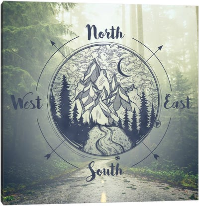 Foggy Forest Trees And Compass California Redwood National Park Canvas Art Print