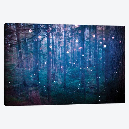 Forest Fairy Lights In Sparkly Blue Bokeh Adventure In The Woods Nature Canvas Print #MGK56} by Nature Magick Canvas Artwork