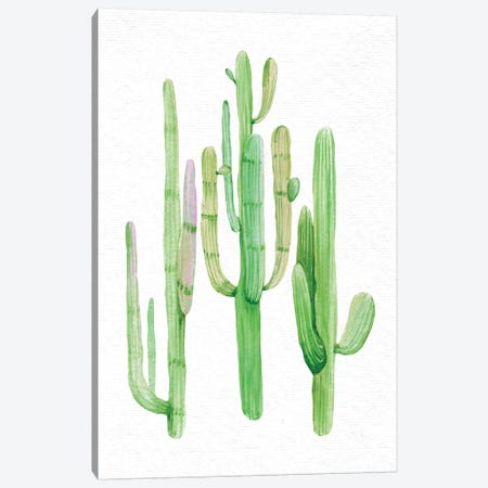 Southwestern Green Trio Canvas Print #MGK78} by Nature Magick Art Print