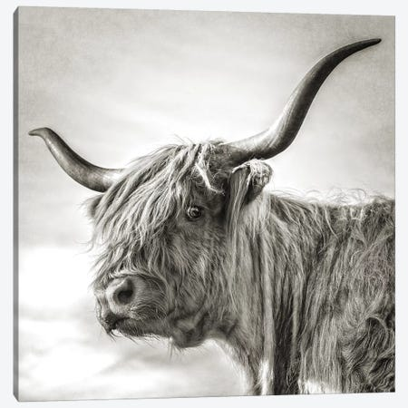 Hesitate Canvas Print #MGM14} by Mark Gemmell Canvas Wall Art