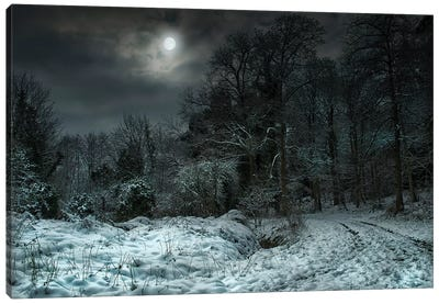 Winter Moon Canvas Art Print