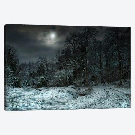 Winter Moon Canvas Print #MGM26} by Mark Gemmell Canvas Print