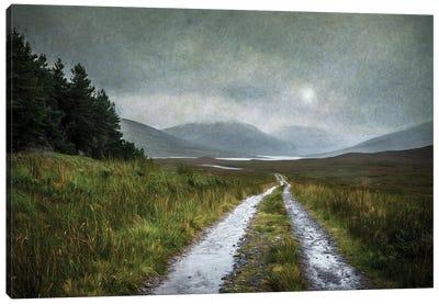Long Walk Home Canvas Art Print