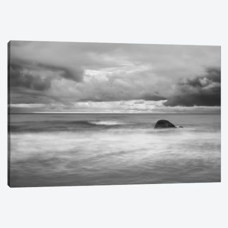 Timeless Canvas Print #MGN5} by Keith Morgan Canvas Artwork