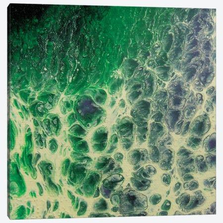 Purple Jade Canvas Print #MGO13} by Michael Goldzweig Canvas Print