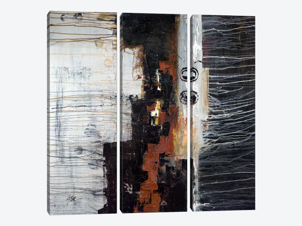 Beautiful Difference by Michael Goldzweig 3-piece Canvas Print