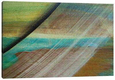 Sliding Away Canvas Print #MGO25