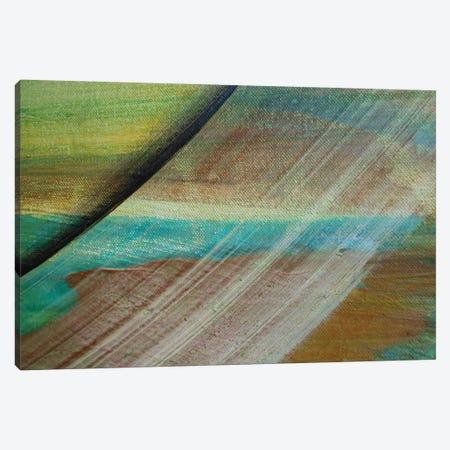 Sliding Away Canvas Print #MGO25} by Michael Goldzweig Canvas Print