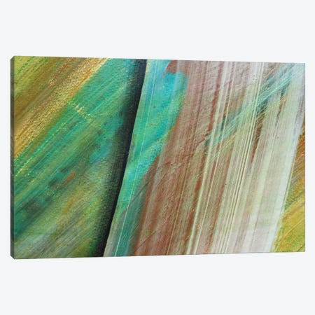 Swipe Canvas Print #MGO26} by Michael Goldzweig Canvas Print