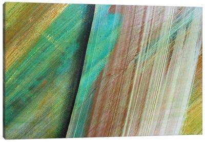 Swipe Canvas Print #MGO26