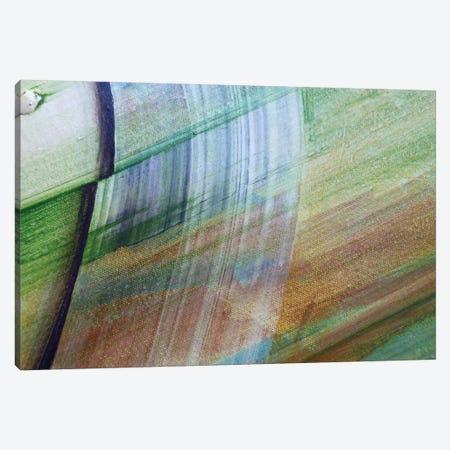 Swish Canvas Print #MGO27} by Michael Goldzweig Canvas Print
