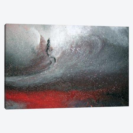 Detail Of Center, Winter Storm Canvas Print #MGO31} by Michael Goldzweig Art Print