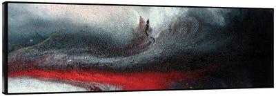 Winter Storm Canvas Art Print