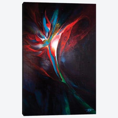 Dancing Star Canvas Print #MGO38} by Michael Goldzweig Art Print