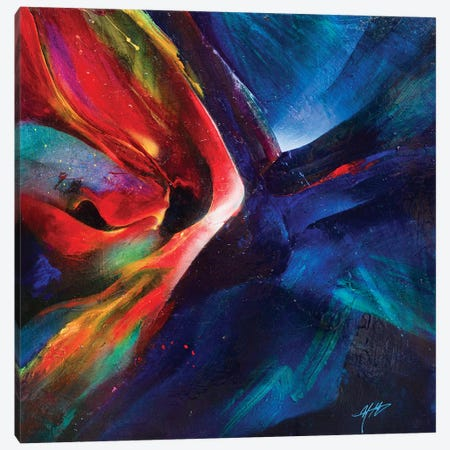 Elysium Canvas Print #MGO39} by Michael Goldzweig Canvas Print