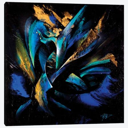 Northern Lights Canvas Print #MGO41} by Michael Goldzweig Canvas Art
