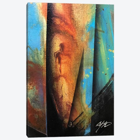 Exotic Dancer Canvas Print #MGO46} by Michael Goldzweig Canvas Print