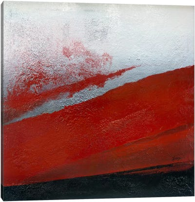 Shades Of Red Canvas Art Print