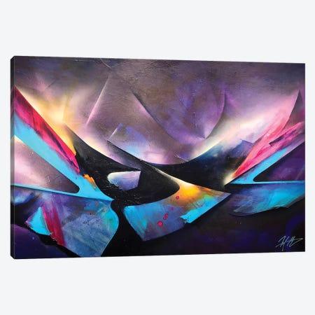 Florida Sunset Canvas Print #MGO61} by Michael Goldzweig Canvas Art