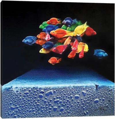 Colored Fish Canvas Art Print