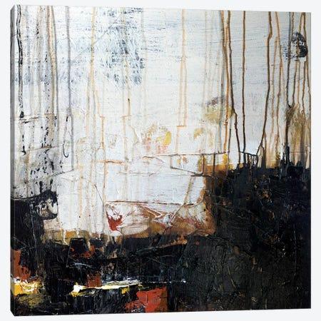 Field Of Dreams Canvas Print #MGO67} by Michael Goldzweig Canvas Art Print