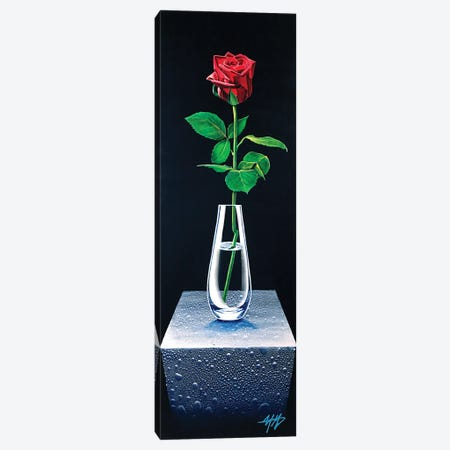 Forever Rose Canvas Print #MGO85} by Michael Goldzweig Canvas Print