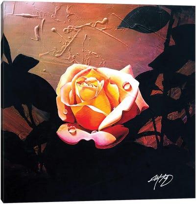 Summer Rose Canvas Art Print