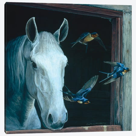 Horse II Canvas Print #MGU10} by Jan Martin Mcguire Canvas Print