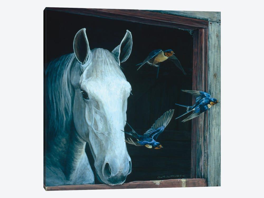 Horse II by Jan Martin Mcguire 1-piece Canvas Art Print
